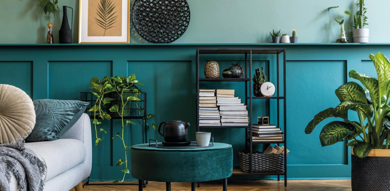 plantes vertes meuble décoration